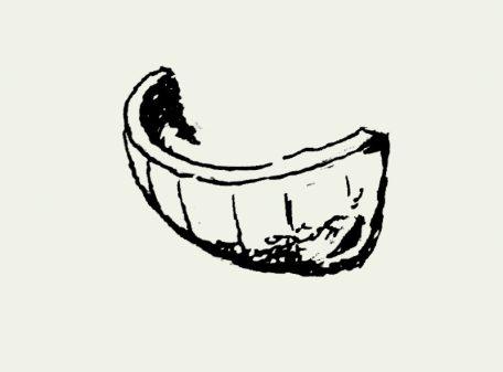 Zeichnung Rauchschwalbennest – Artikel 405