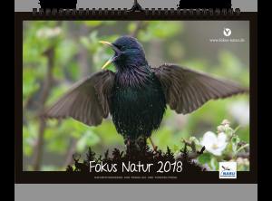 Star Fokus Natur-2018